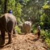 Ethical trekking Thailand